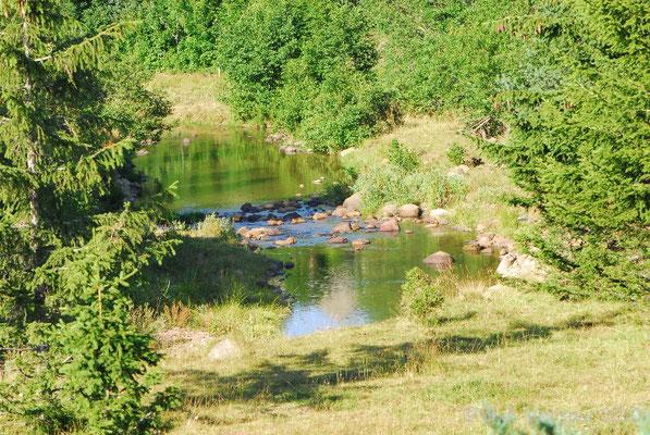 Lignon river