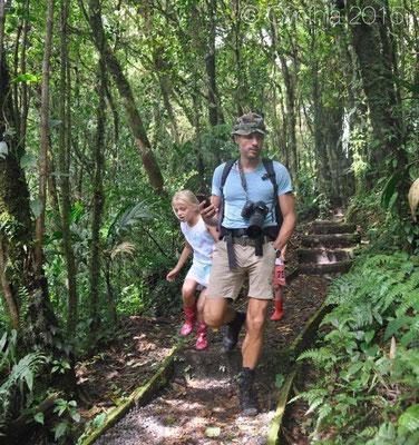 Santa Elena forest Reserve