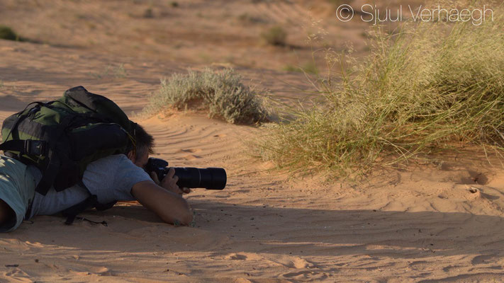 Me photographing Nidua Fringe-Fingered Lizard, © Sjuul Verhaegh
