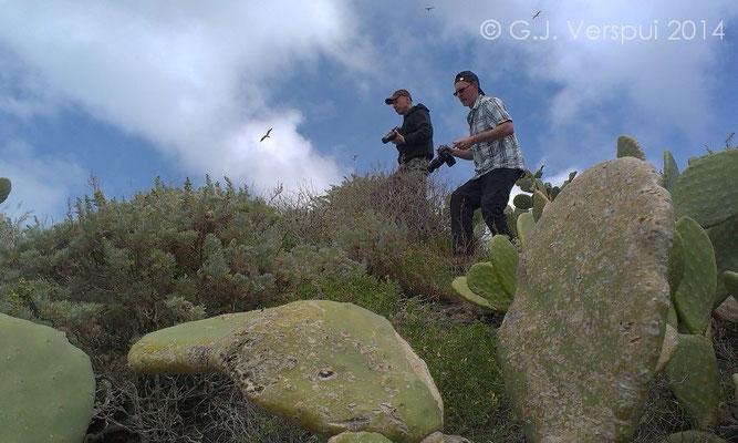 Skylining UK lizard stalking team