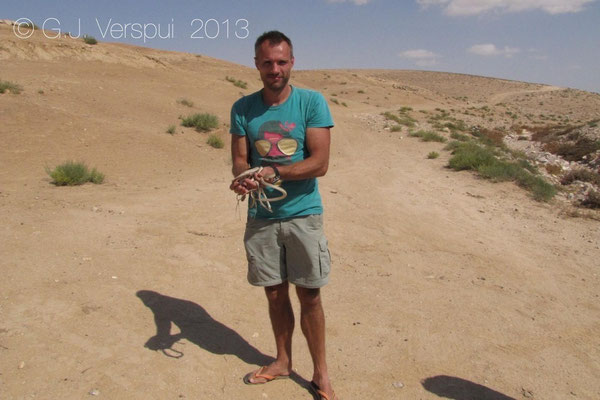 Me with 7 Roger's Racers - Platyceps rogersi