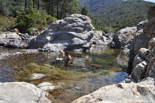 Corsican swimming