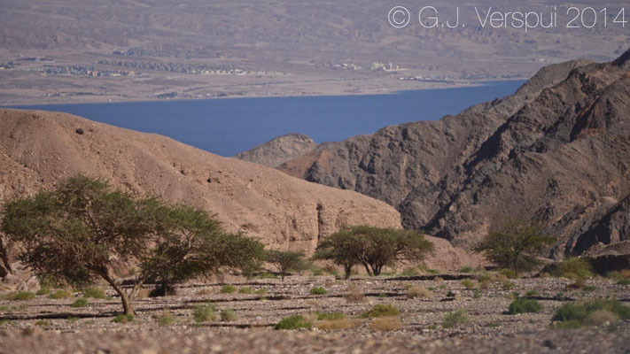 Eilat surroundings.