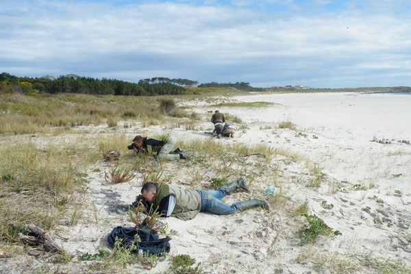 Beach boys...© Wouter Beukema