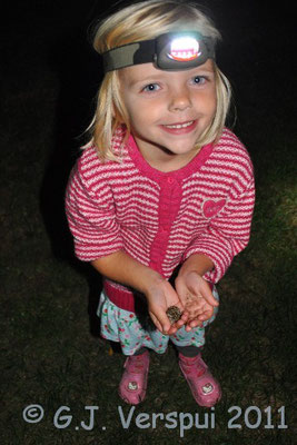 Elin with a Natterjack Toad, which she found her self.