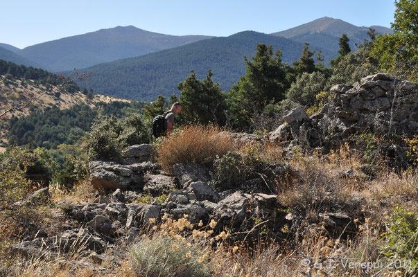 Los Montes de Valsain