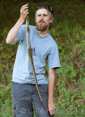 Bert with his extreme Grass Snake - Natrix natrix   © Laura Tiemann