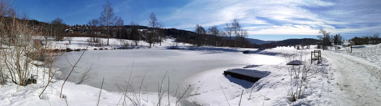 winterlicher Naturbadesee im Kurpark