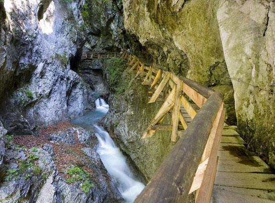 Sommersport: Wandern, Bergsteigen, Spazieren,...
