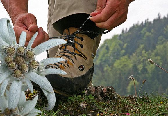 Ausflug mit der Bergwanderschule Kiefersfelden vom Hotel zur Post Kiefersfelden