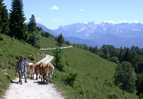 Wanderausflug vom Hotel zur Post Kiefersfelden
