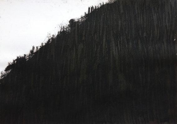 Ohne Titel, 50 x 70 cm, Tusche und Ölkreide auf Papier, Susanne Renner-Schulz, 2014