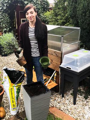 Casa Cozy Bepflanzung