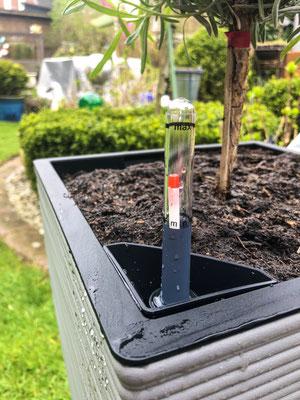 Casa Cozy Bewässerungssystem