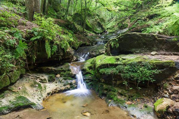 Hohnstein - Im Schindergraben