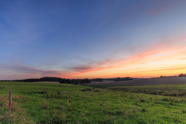 Abends auf dem Feld