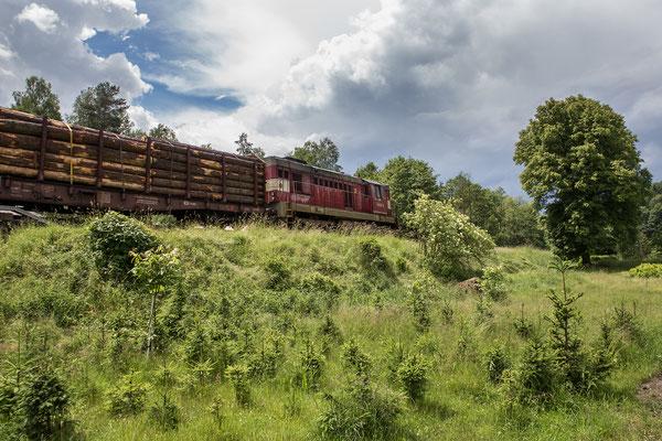 Beifang: ein Holzzug, gezogen von 742 225-6, Spitzname: Kofferradio
