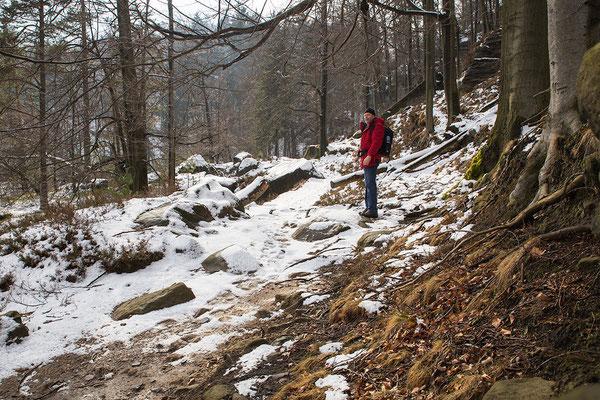 Winter am Kleinen Winterberg