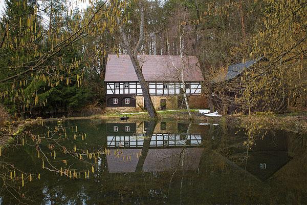 Spiegelei neben der Bockmühle