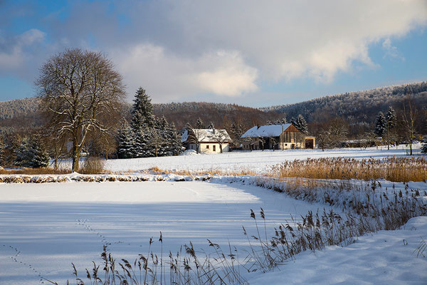 Winter am Langburkersdorfer Anbau