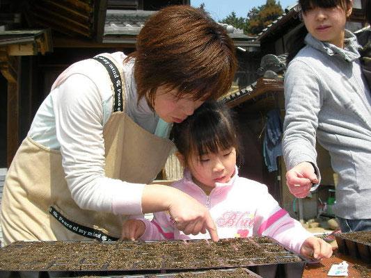 種まきをする親子の写真