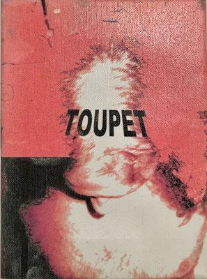 """Toupet"" - Digital Print auf Leinwand 18x24cm  2003"