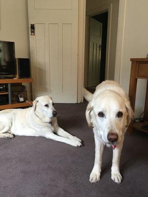 Lulu und Emma