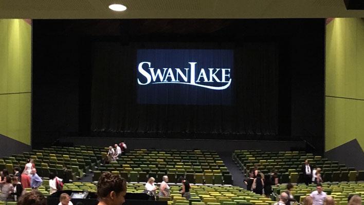 Heikes Geburtstagsgeschenk: SwanLake vom St. Petersburg Ballet Theatre! Irgendwie hat das so ein bisschen den Jahresausklang eingeläutet