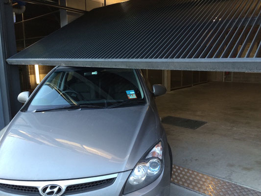 ...hat ein Nickerchen auf unserem Auto gemacht...