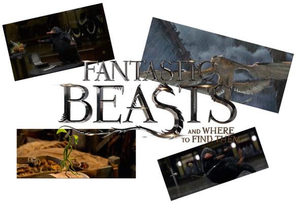 Ein nicht ganz selbstloses Weihnachtsgeschenk von mir: Fantastic Beasts