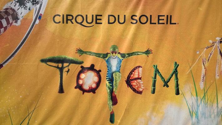 Uns ist der Zirkus aber wesentlich lieber!