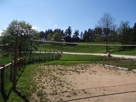 Terrain de Volley/pétanque/badminton...
