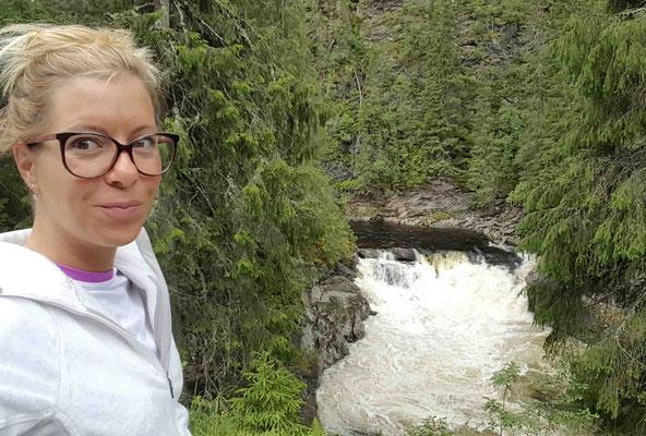 Wasserfall wo die Lachse hochspringen