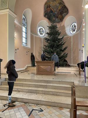 Der Baum ist in der Kirche aufgestellt