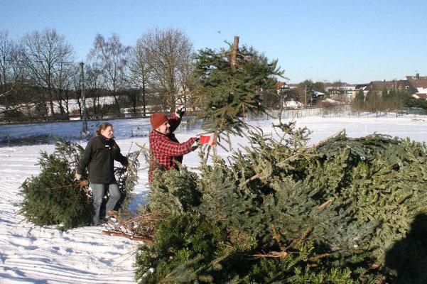 Weihnachtsbaumaktion mit Schnee (2009)