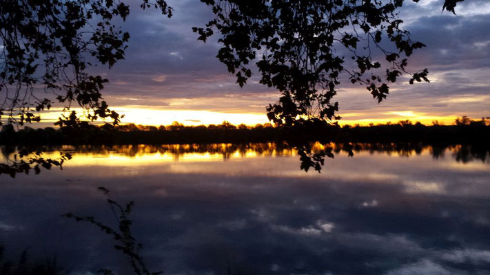 Morgenstimmung am Ufer der Sáone heute früh (17.10.19) in Măcon