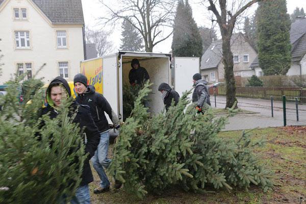 Weihnachtsbaumaktion ohne Schnee (2015)