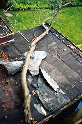 Kleingartenversicherung KVD - Laube Sturmschaden