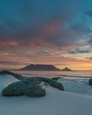 Die Strände um Kapstadt herum sind einfach ein Traum.