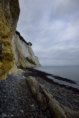 Møns Klint, Denmarks tallest cliffs, at Møns Island