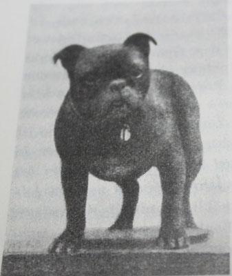 Toy Bulldog Jahr unbekannt