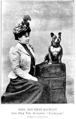 Züchterin Mrs. Hewitt mit ihrem Toy Bulldog