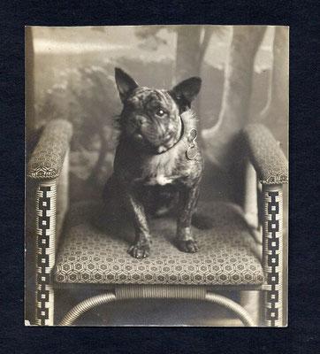 Postkarte von 1905