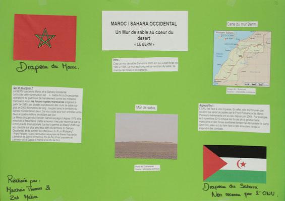 7. Le mur du Sahara Marocain (Berm)