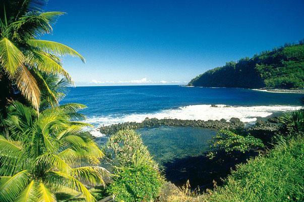 Guyane, plage de Raisins Clairs