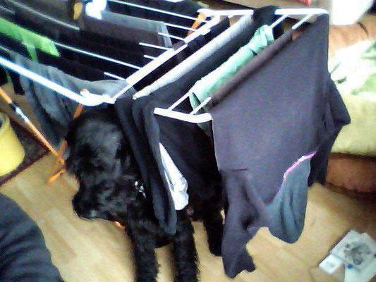 Herr O. unter dem Wäscheständer