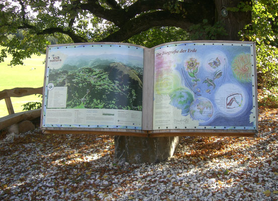 (c) TVB Naturpark Zirbitzkogel-Grebenzen_Furtner Teich mit Blick auf den Zirbitzkogel