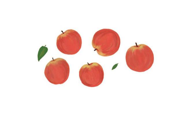 りんご/photoshop