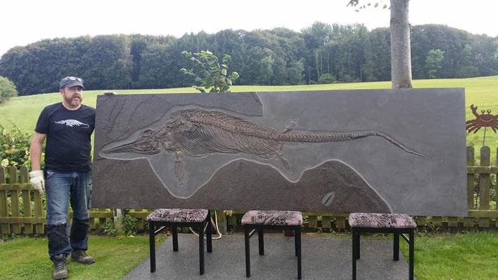 Ichthyosaur quadrissicus