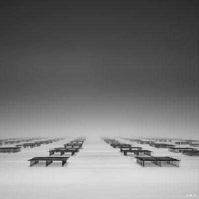 "Olivier KAUFFMANN,'Thau dans le brouillard"",Photographie,/,2017"